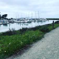A cloudy day 🏃‍♀️ by the bay ... #sixfeetapart #socialdistance day 7 in California.